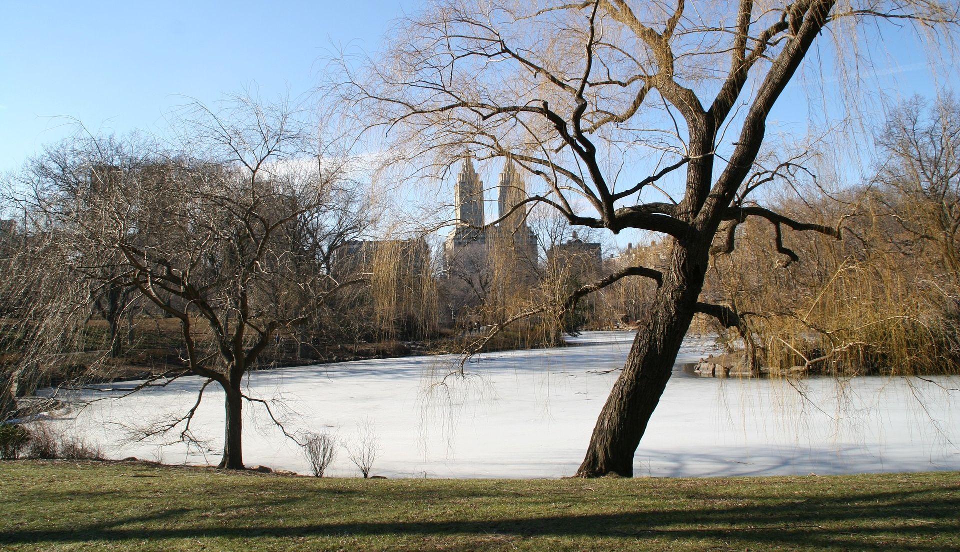 VIDEO: NEW YORK Tinejdžeri snimali silfieje pa propali kroz led