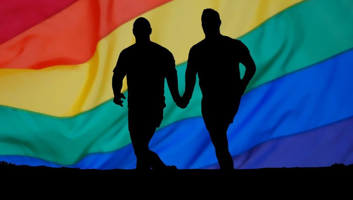 U Hrvatskoj sklopljeno 174 gay braka, 110 u Zagrebu