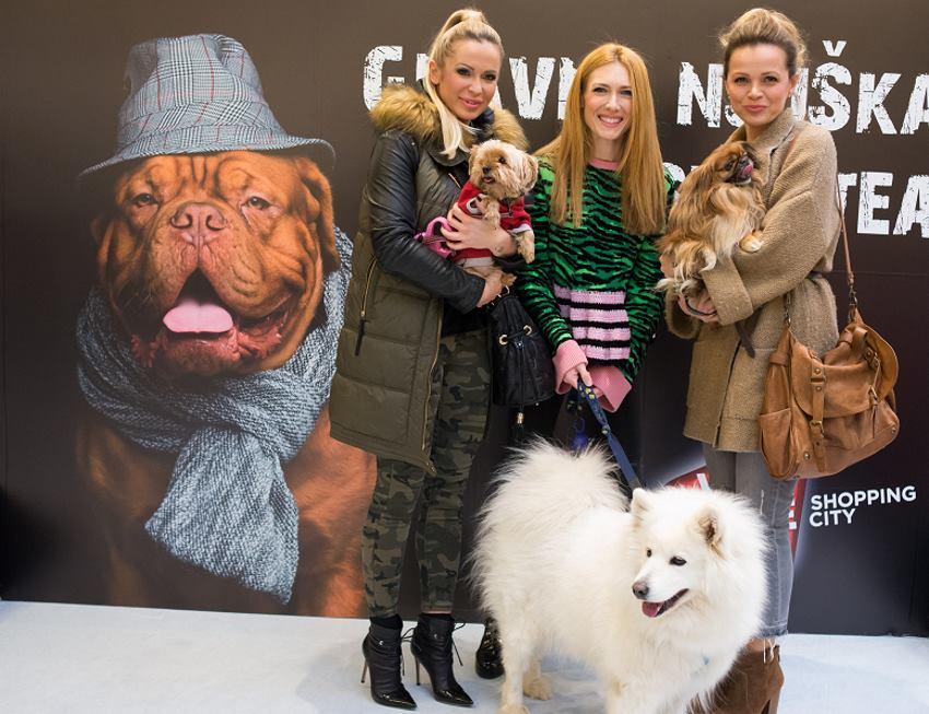 Renata Sopek, Ivana Miseric i Sandra Bagaric sa svojim psima