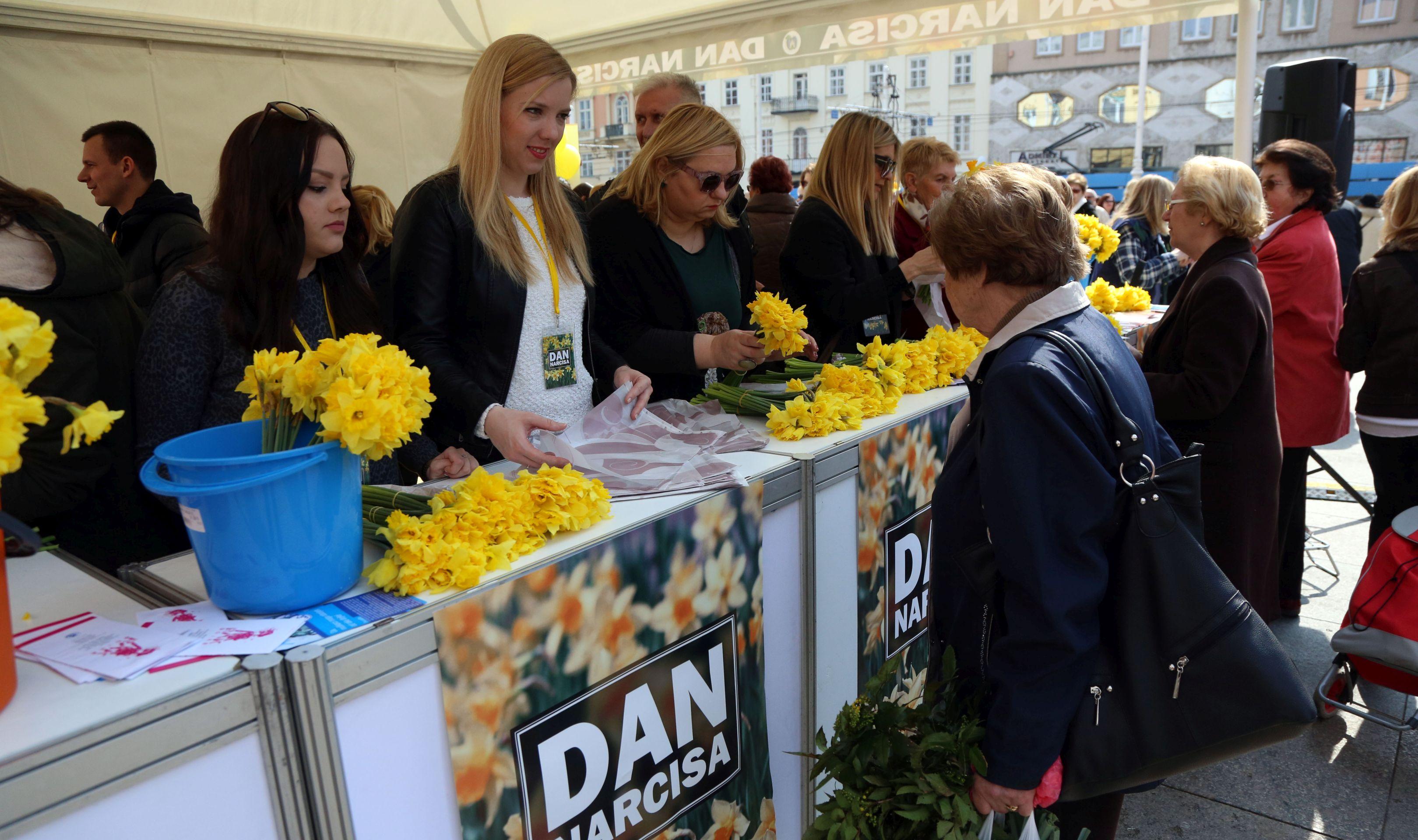 DAN NARCISA Prigodna prodaja simbola proljeća radi podizanja svijesti o raku dojke
