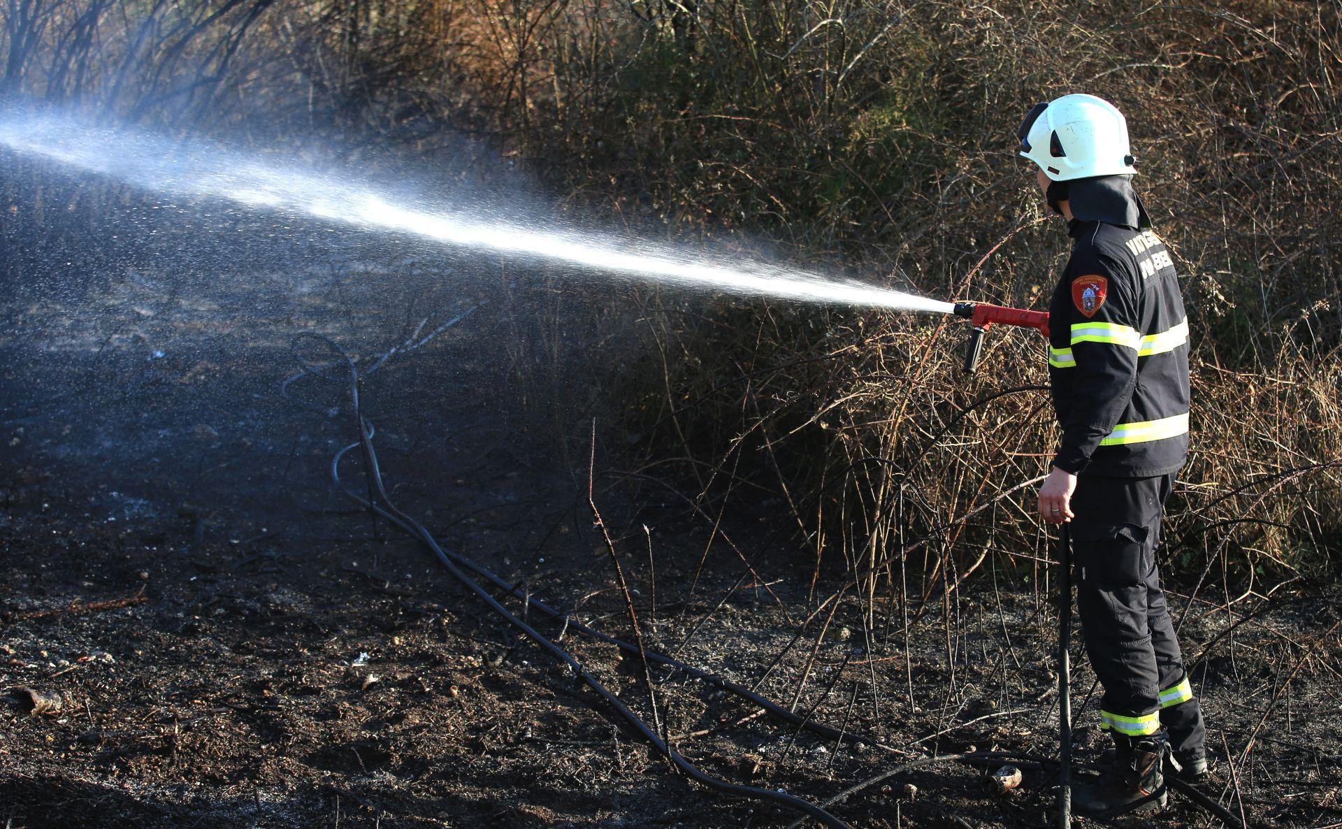 U požaru između Ciste Provo i Ciste Velike izgorjelo 60 hektara borove šume