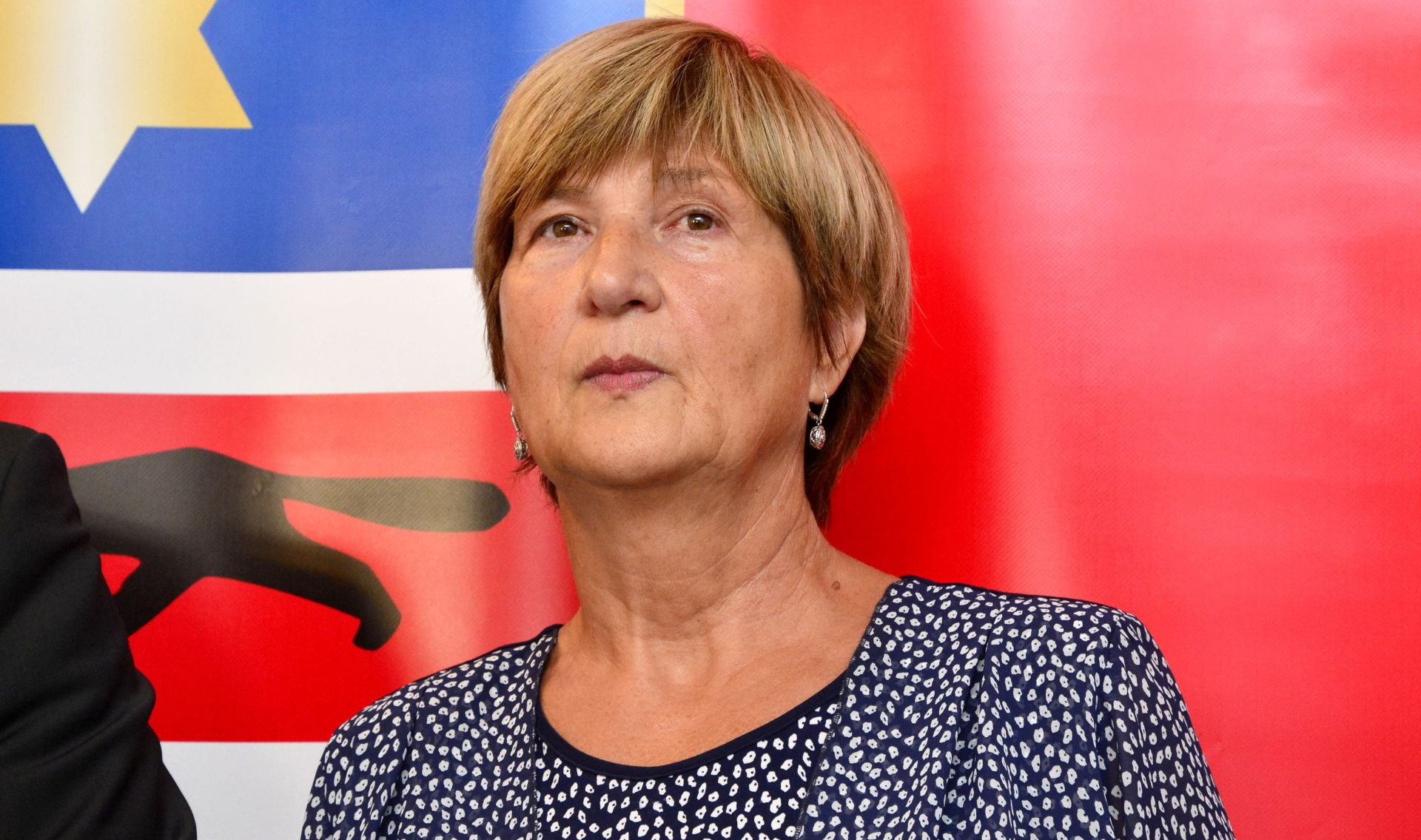 Ruža Tomašić povlači se s mjesta predsjednice Konzervativaca