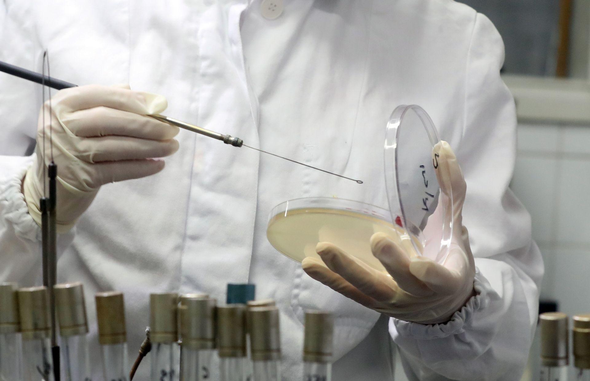 IZVJEŠĆE ZNANSTVENIKA: Običan virus možda je krivac za celijakiju