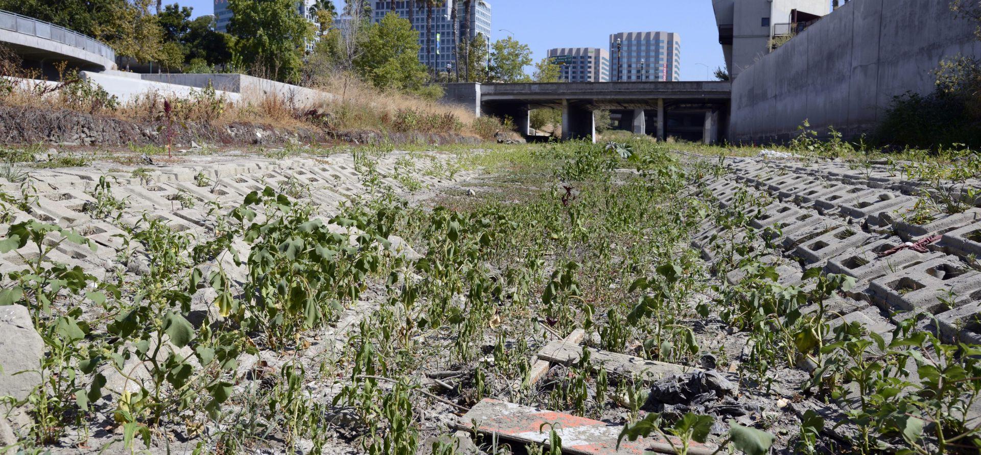 Proglašen završetak petogodišnje kalifornijske suše