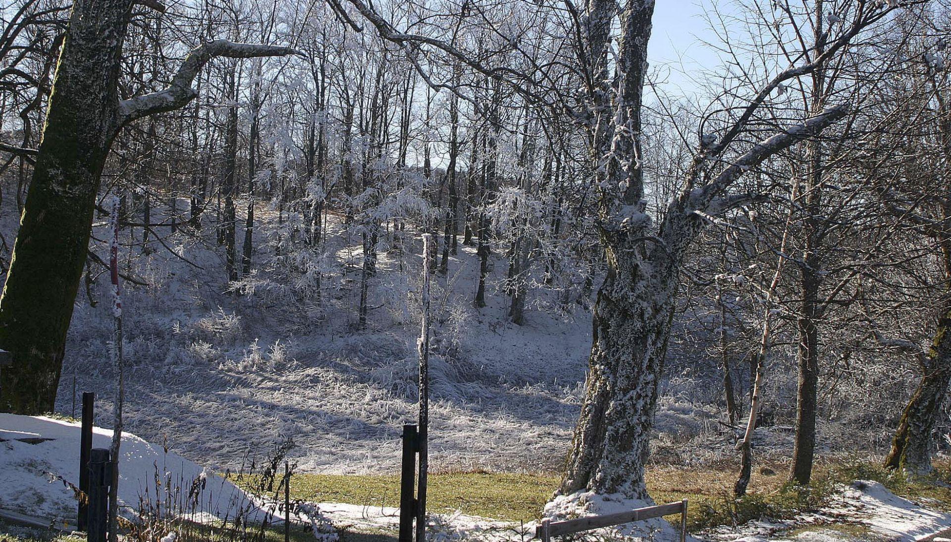 VIDEO: PROMET Ograničenja zbog snijega i vjetra