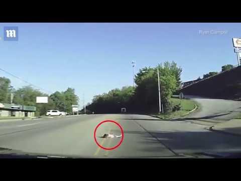 VIDEO: Kamera snimila trenutak kada je četverogodišnja djevojčica ispala iz autobusa