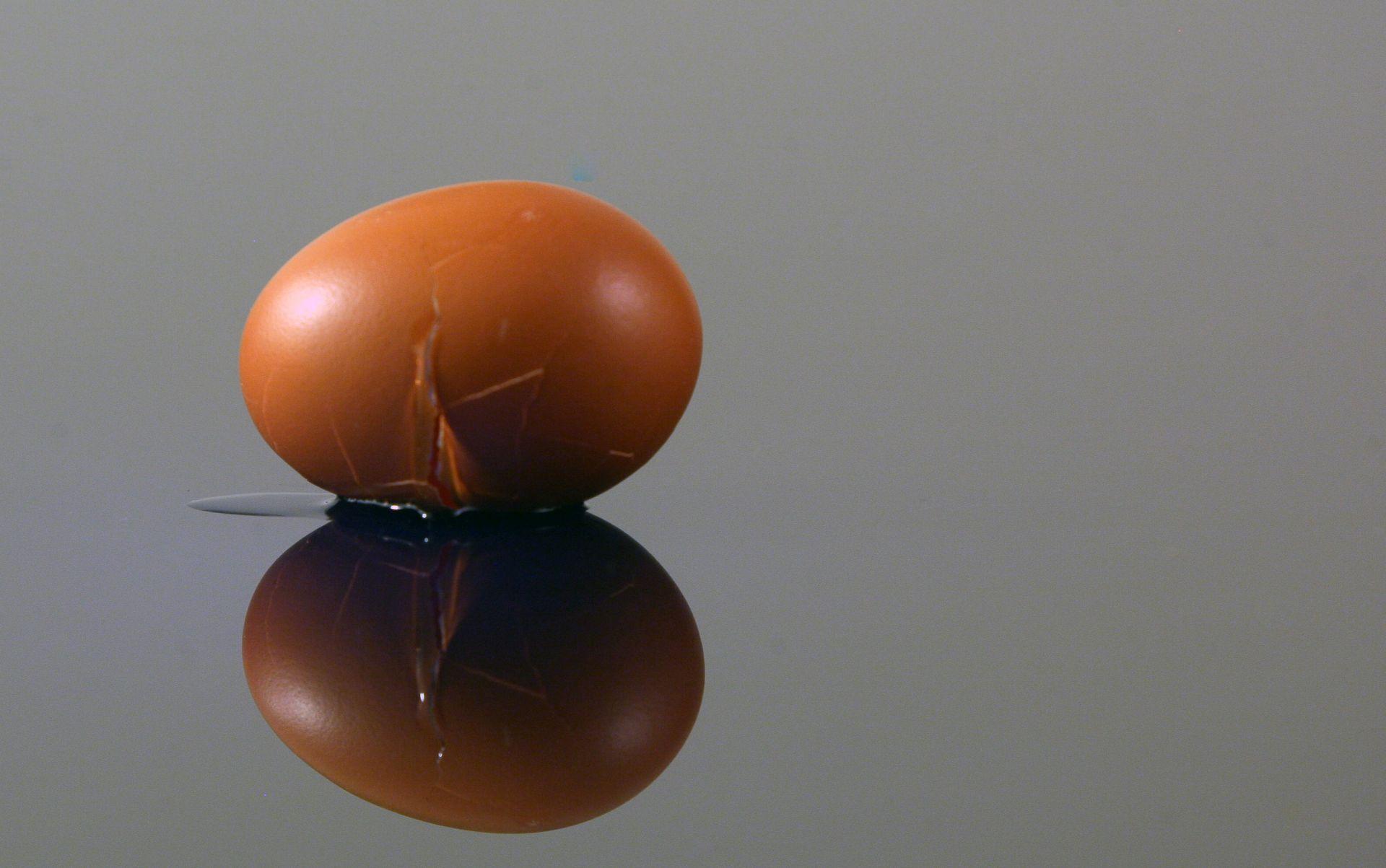 MUĆAK Kriza kontaminiranih jaja se širi na Francusku i Veliku Britaniju