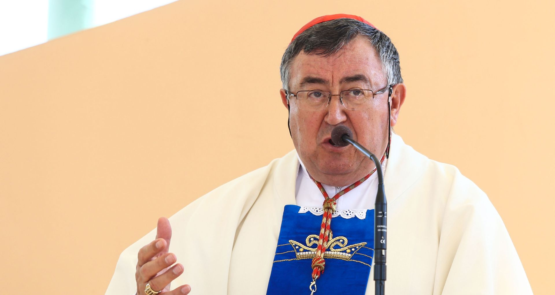 KARDINAL PULJIĆ 'Službena politika u potpunosti ignorira ugroženost katolika u BiH'