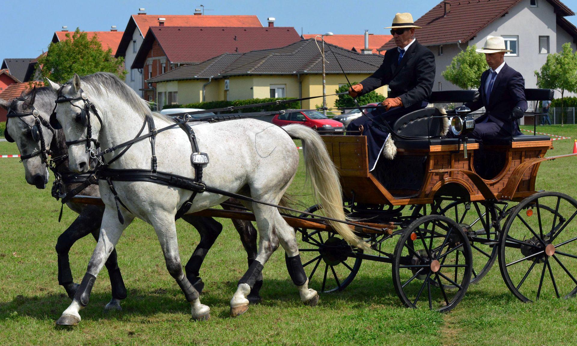 Kuščević o limuzinama: Ja sam predlagao da nabave konje