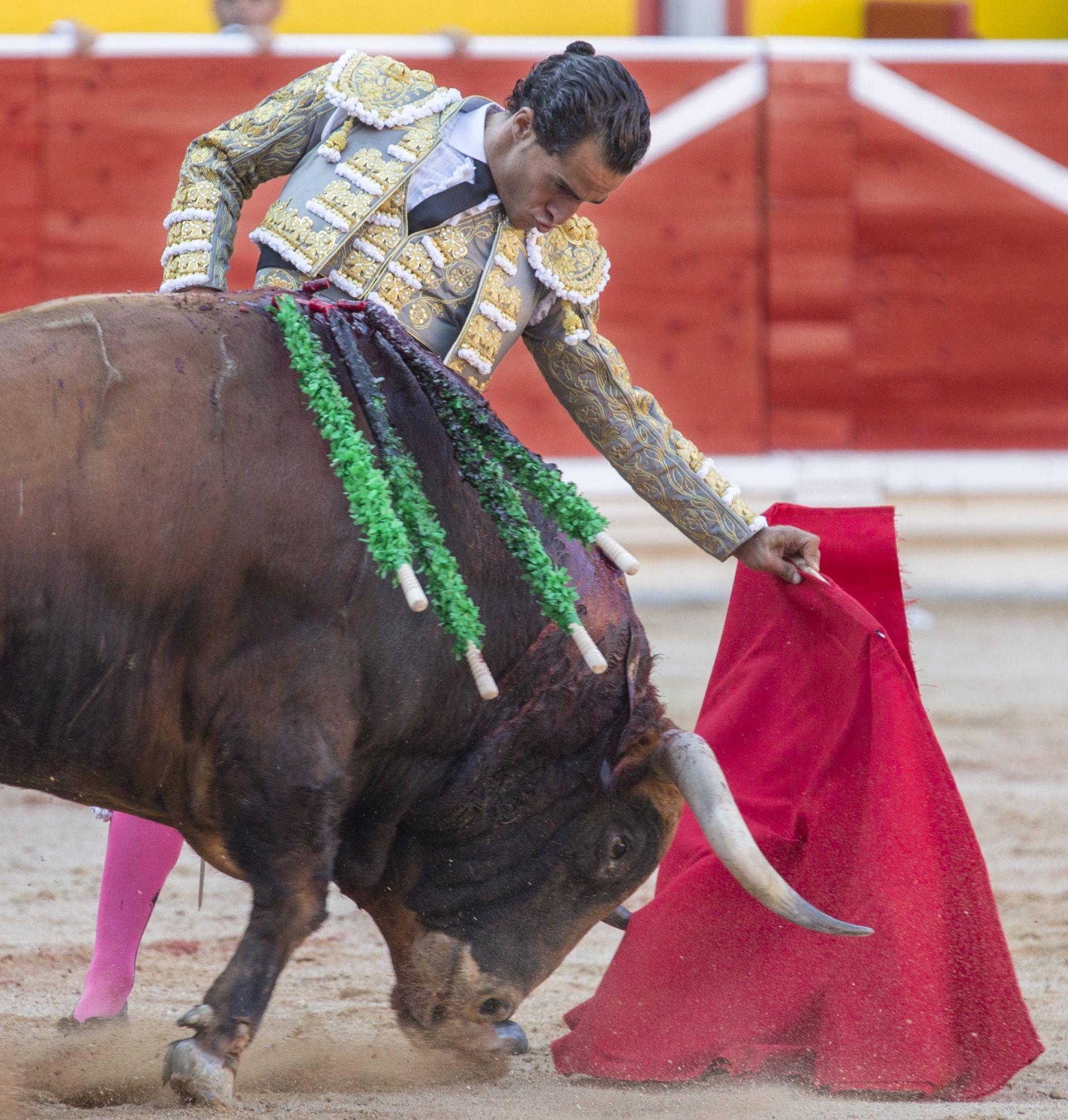 Bik ubio španjolskog matadora, rogom mu probio pluća