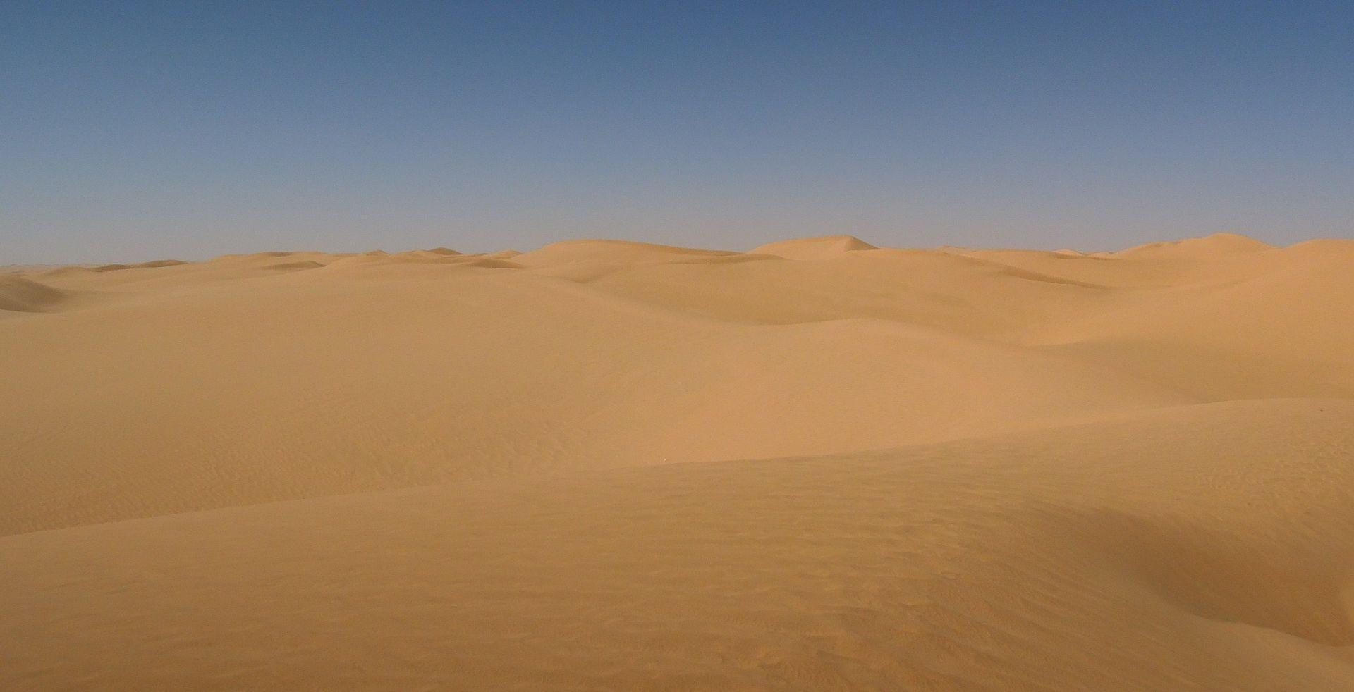 CRVENI KRIŽ Najmanje 44 migranta umrlo u Sahari od žeđi