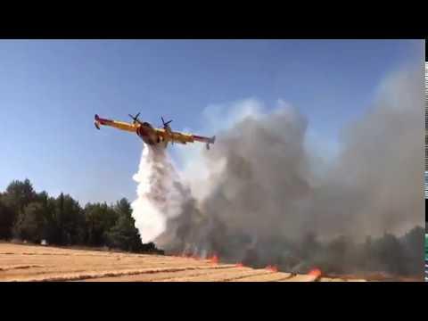 VIDEO: PLANULO TIJEKOM OBUKE Protupožarne zračne snage HRZ i PZO-a gasile požar u Izraelu