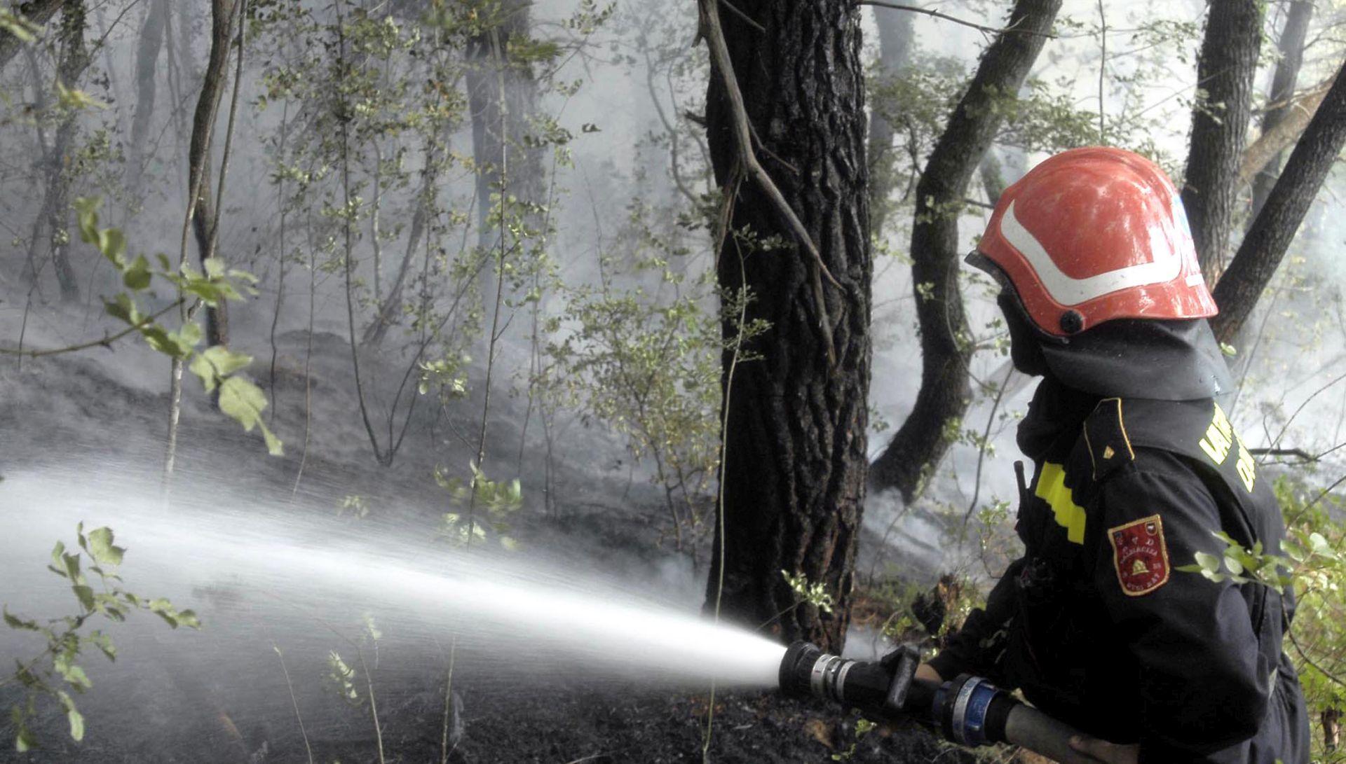 Požar kod Čepikuća pod nadzorom, popodne gorjelo i na Konavoskim brdima