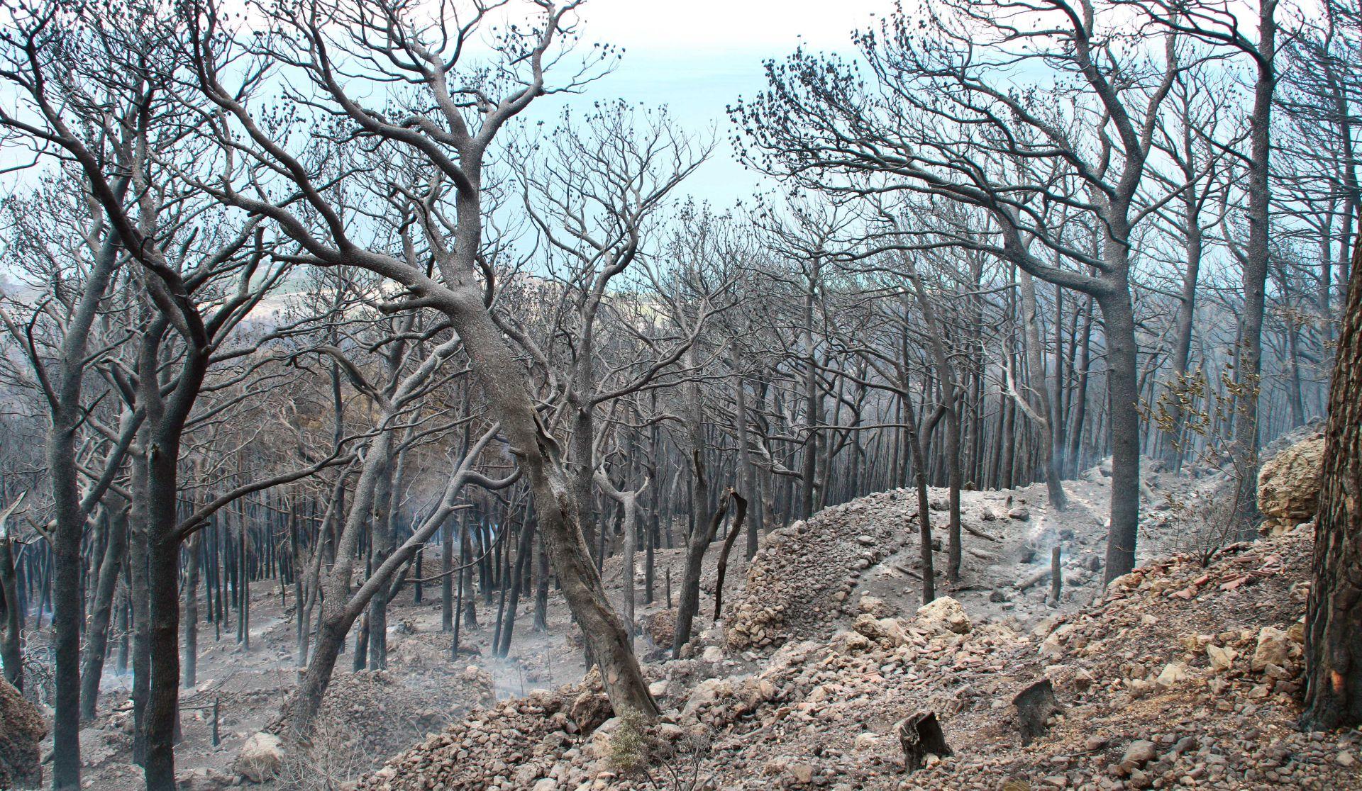 Još gori požar u Bilicama kod Šibenika, ali je pod kontrolom