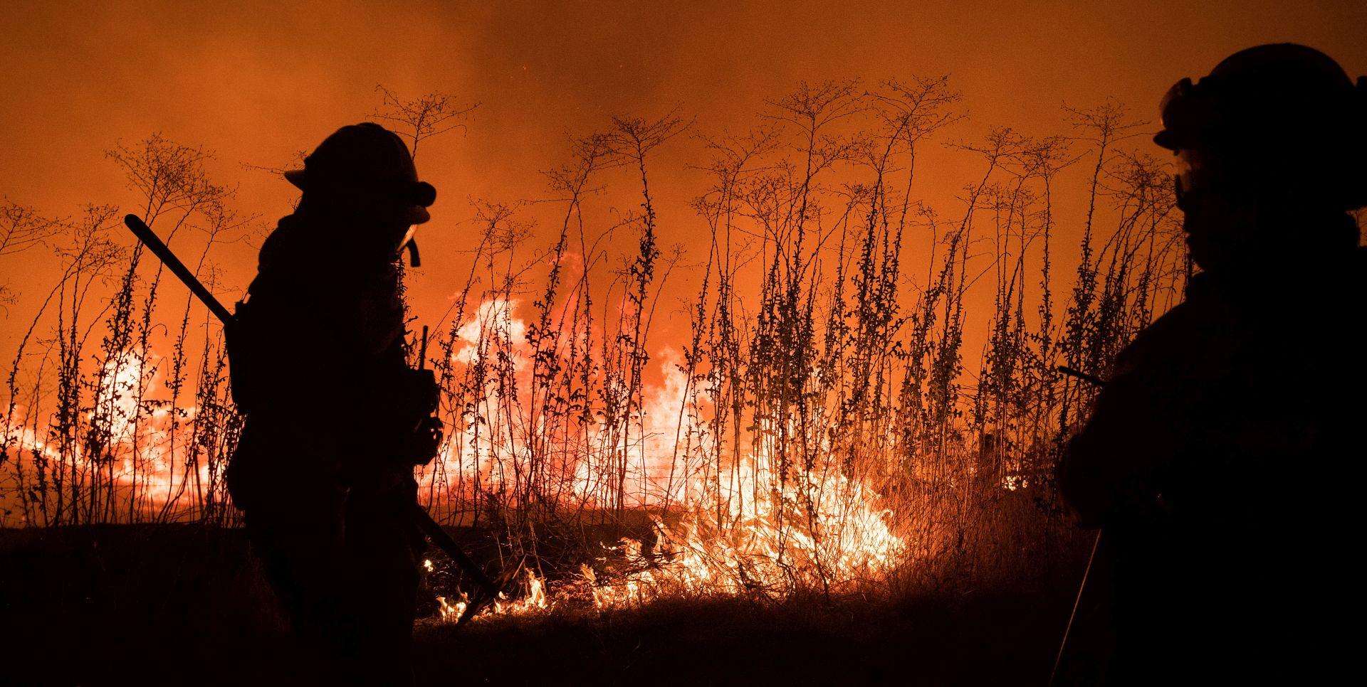 Stanovnici Kalifornije evakuirani zbog šumskih požara u blizini Yosemitea