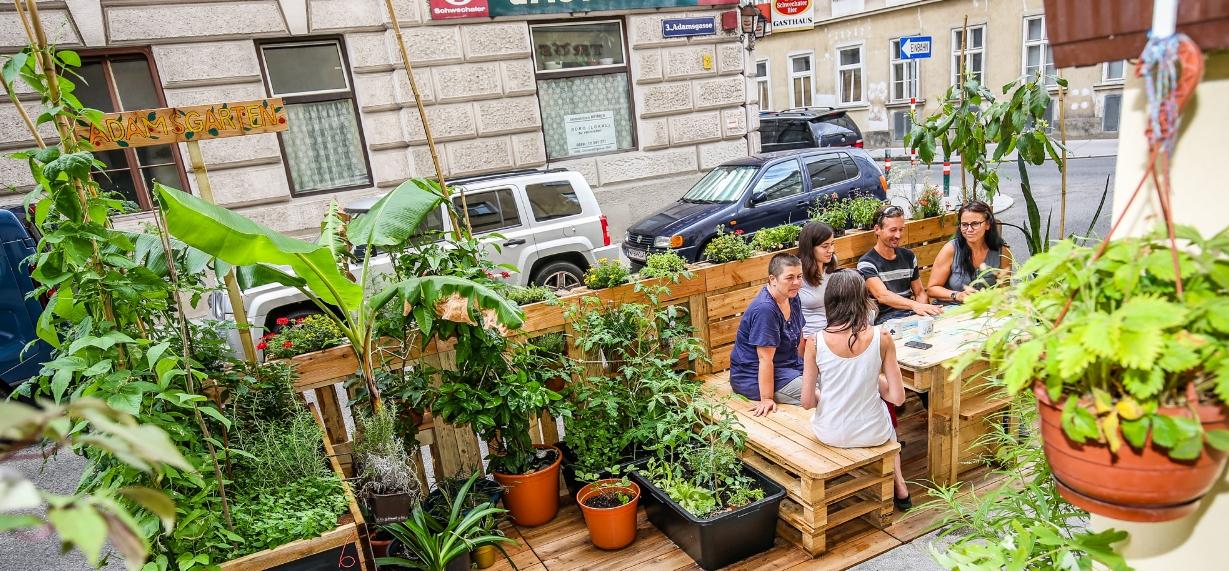 Grad Beč potiče gradnju 'zelenih oaza' na ulicama