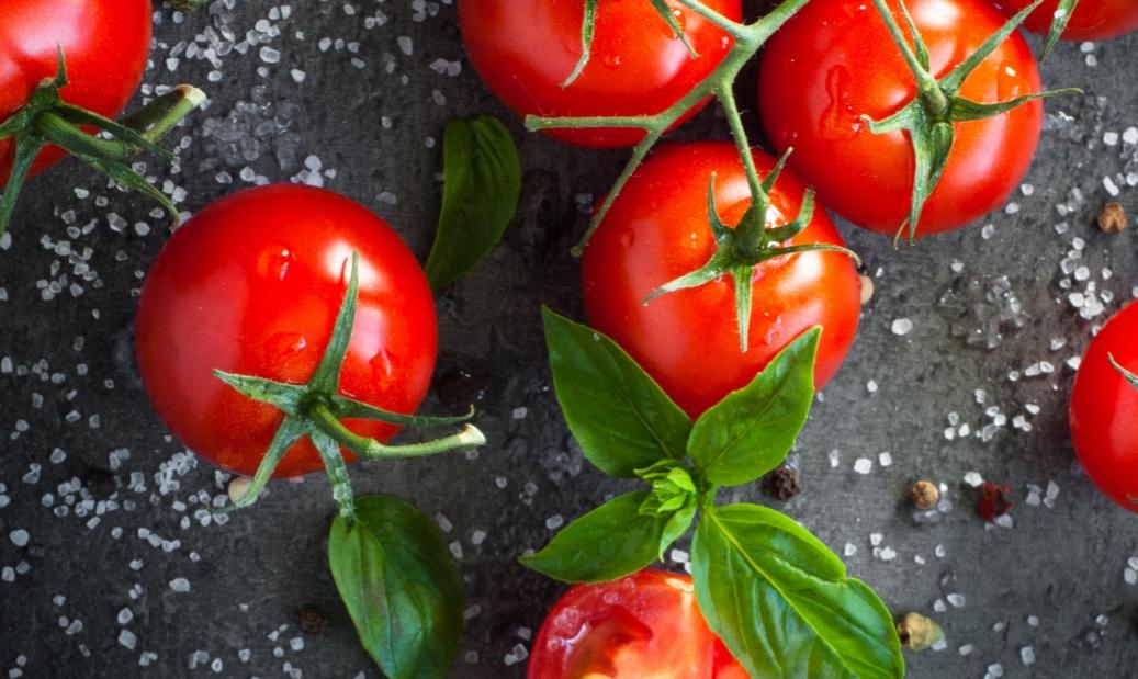 LE BISTRO Sočne domaće rajčice u kreativnim kombinacijama chefa Ane Grgić