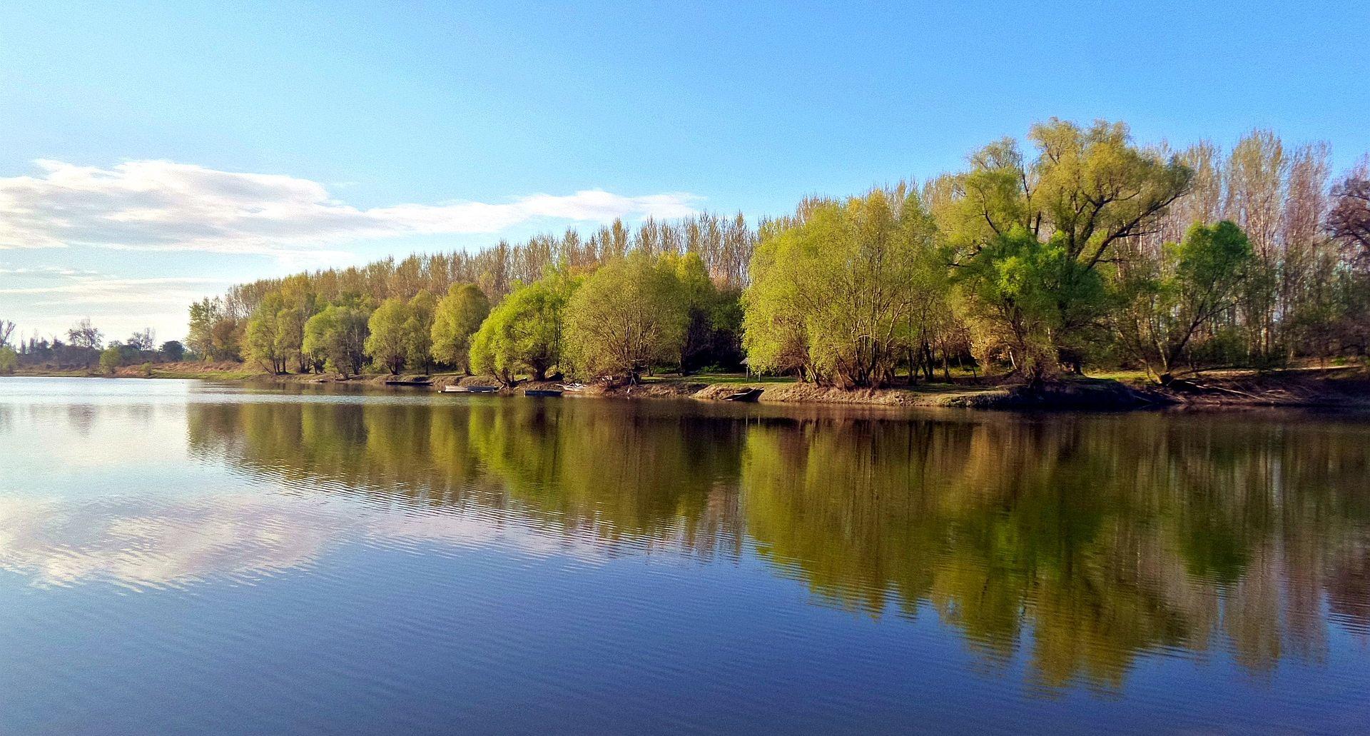EKOLOŠKA AKCIJA U VUKOVARU Ronioci čistili korito Dunava