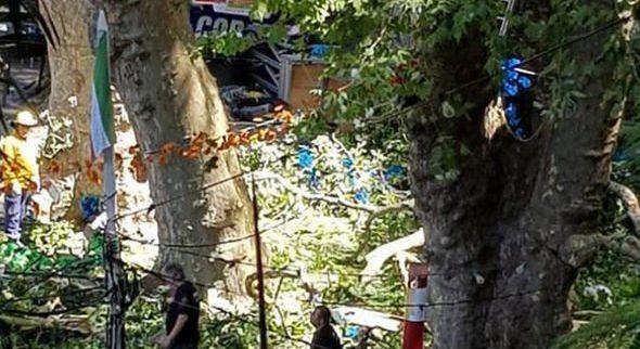 PORTUGAL Palo stablo na hodočasnike, poginulo najmanje 12 ljudi