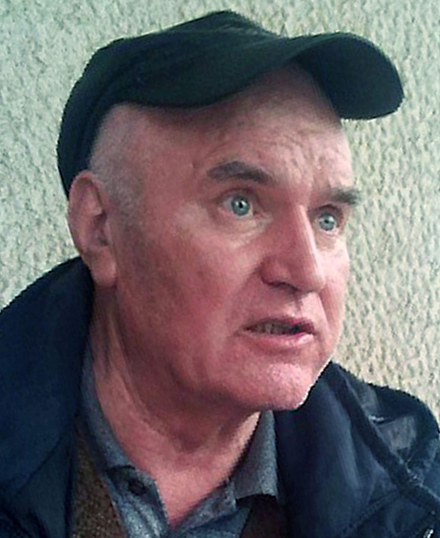 Srbija bi jamčila da se Mladića zbog lošeg zdravlja pusti na privremenu slobodu