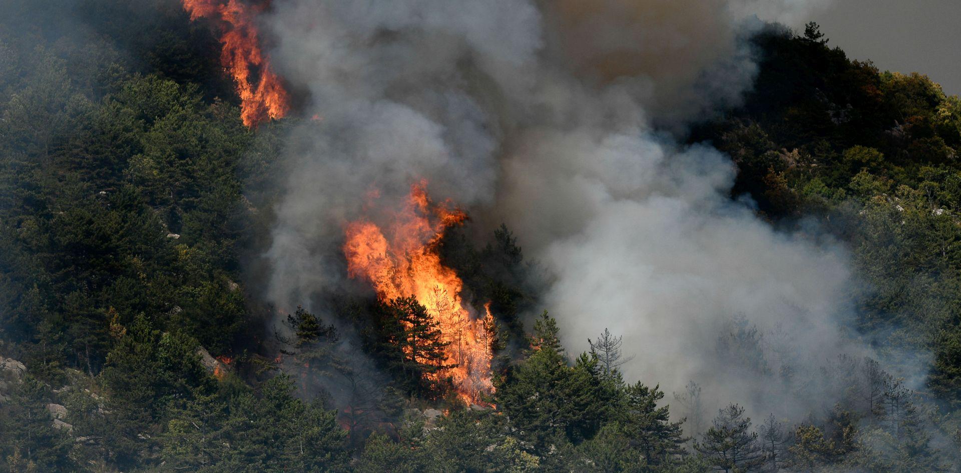 IZGORJELO 30 HEKTARA BOROVE ŠUME Požar kod Muća još aktivan