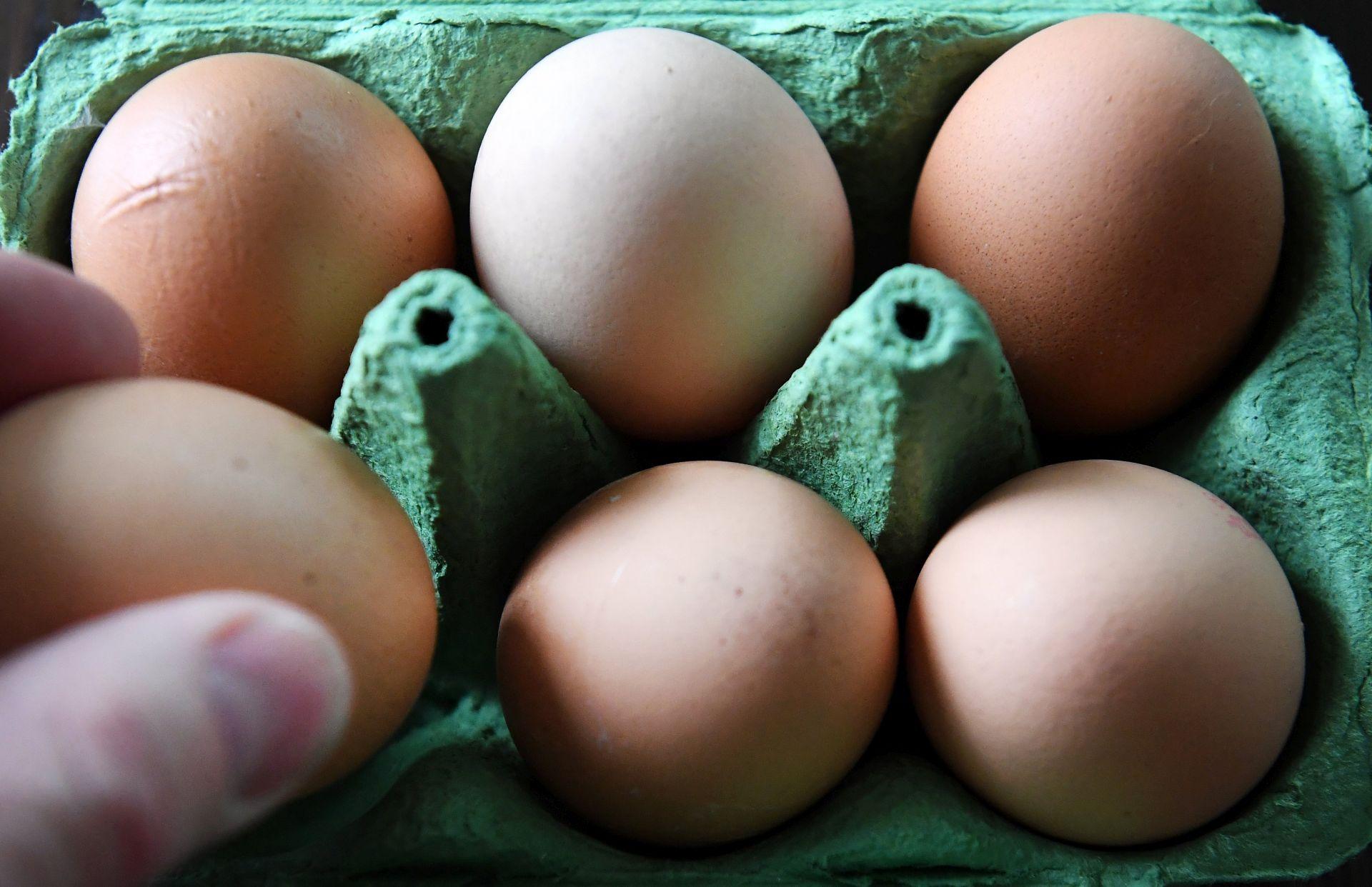 Europski povjerenik poziva na sastanak posvećen aferi s kontaminiranim jajima