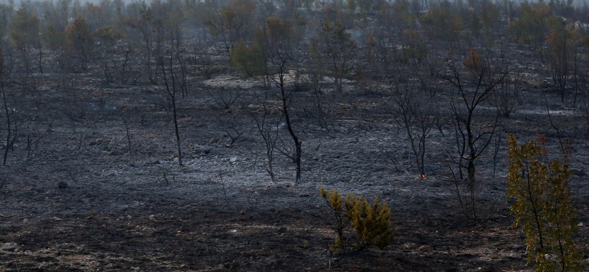 Ministarstvo pozvalo poljoprivrednike da se jave na natječaj za obnovu požarom uništenog potencijala