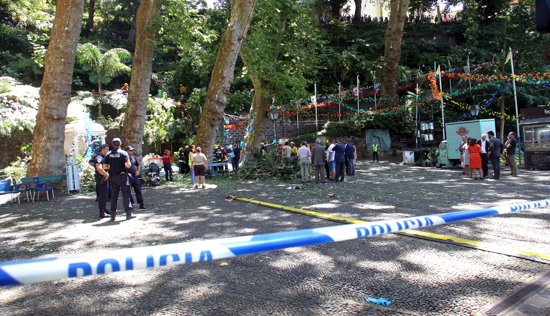 Srušeno stablo ubilo 13 ljudi na proslavi Velike Gospe na Madeiri