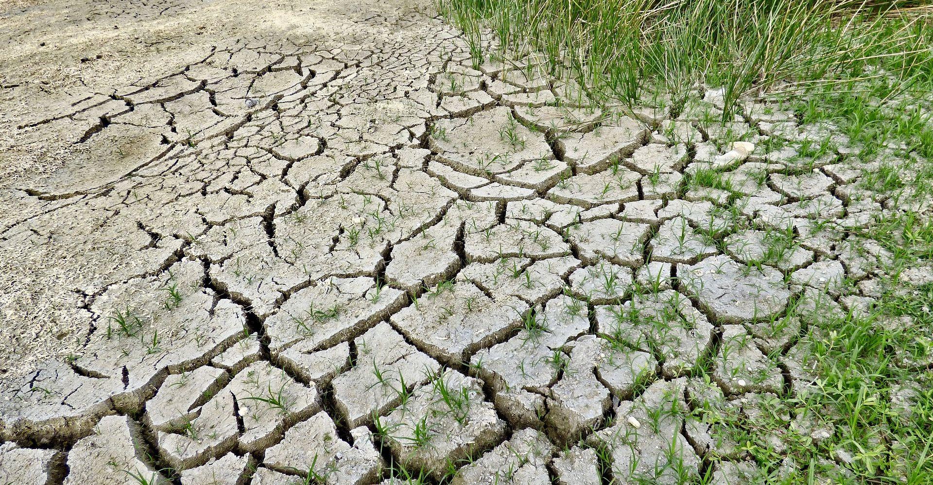 ZNANSTVENICI UPOZORAVAJU Zbog ekstremnih vremenskih prilika i do 152 tisuće mrtvih u Europi do 2100.