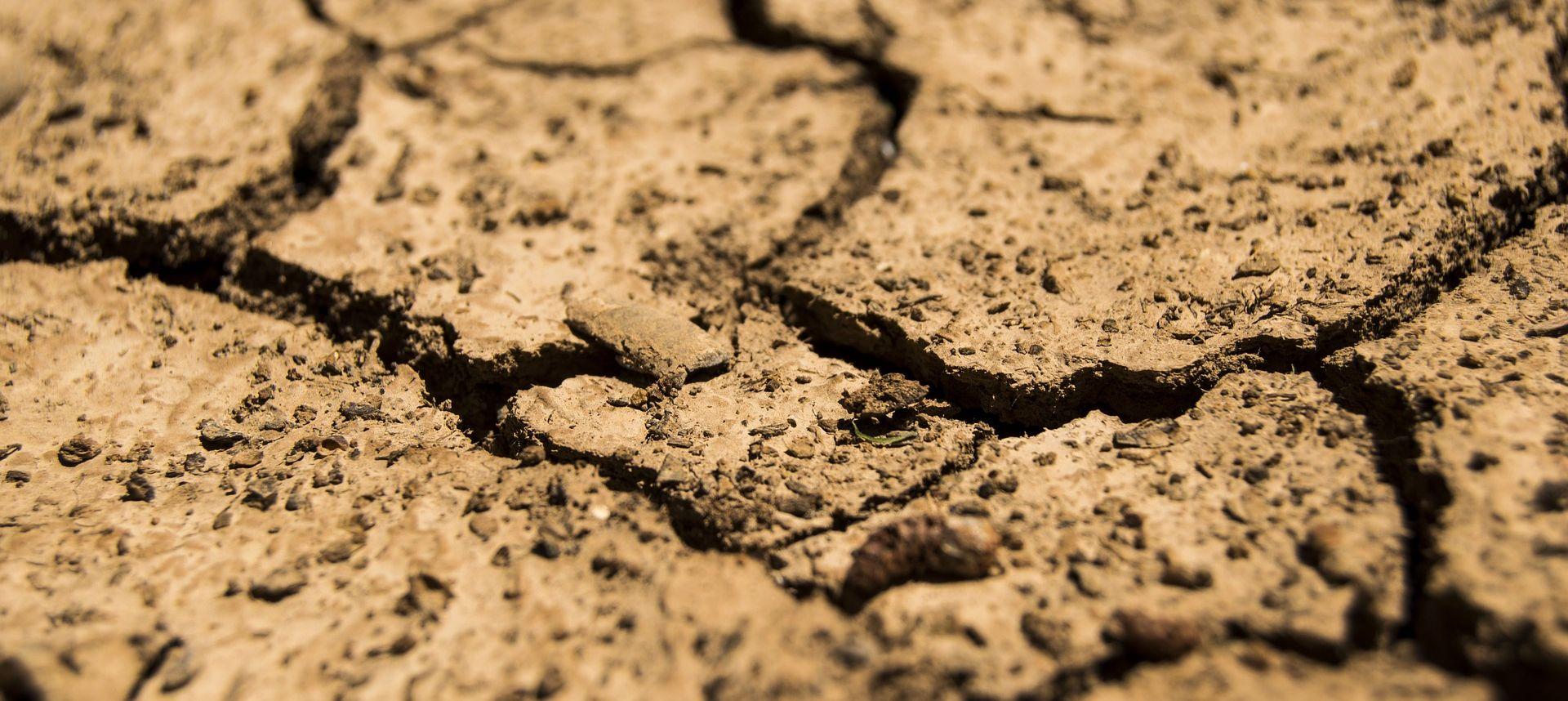 """Posljedice suše u Sloveniji """"skoro nepopravljive"""""""
