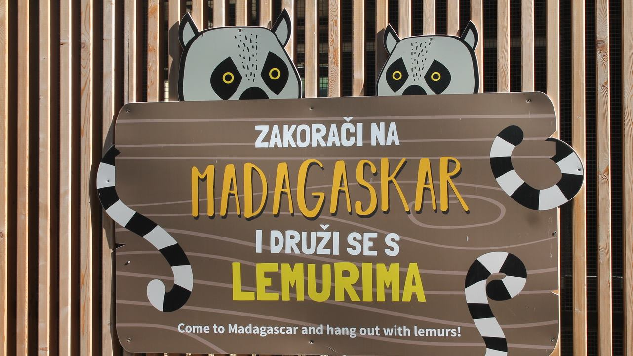 ZG ZOO Oči u oči s lemurima