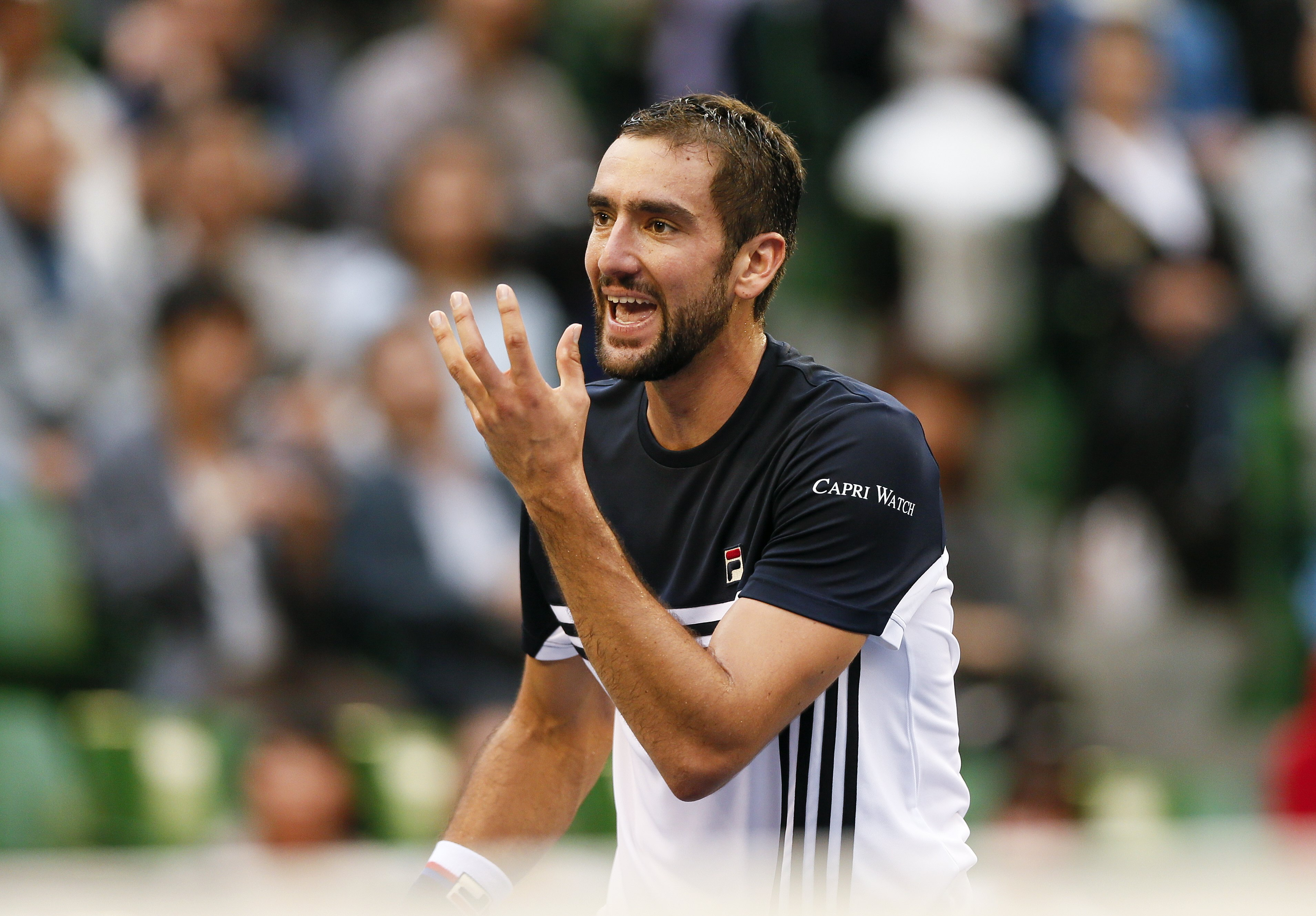 ATP Čiliću ranking karijere