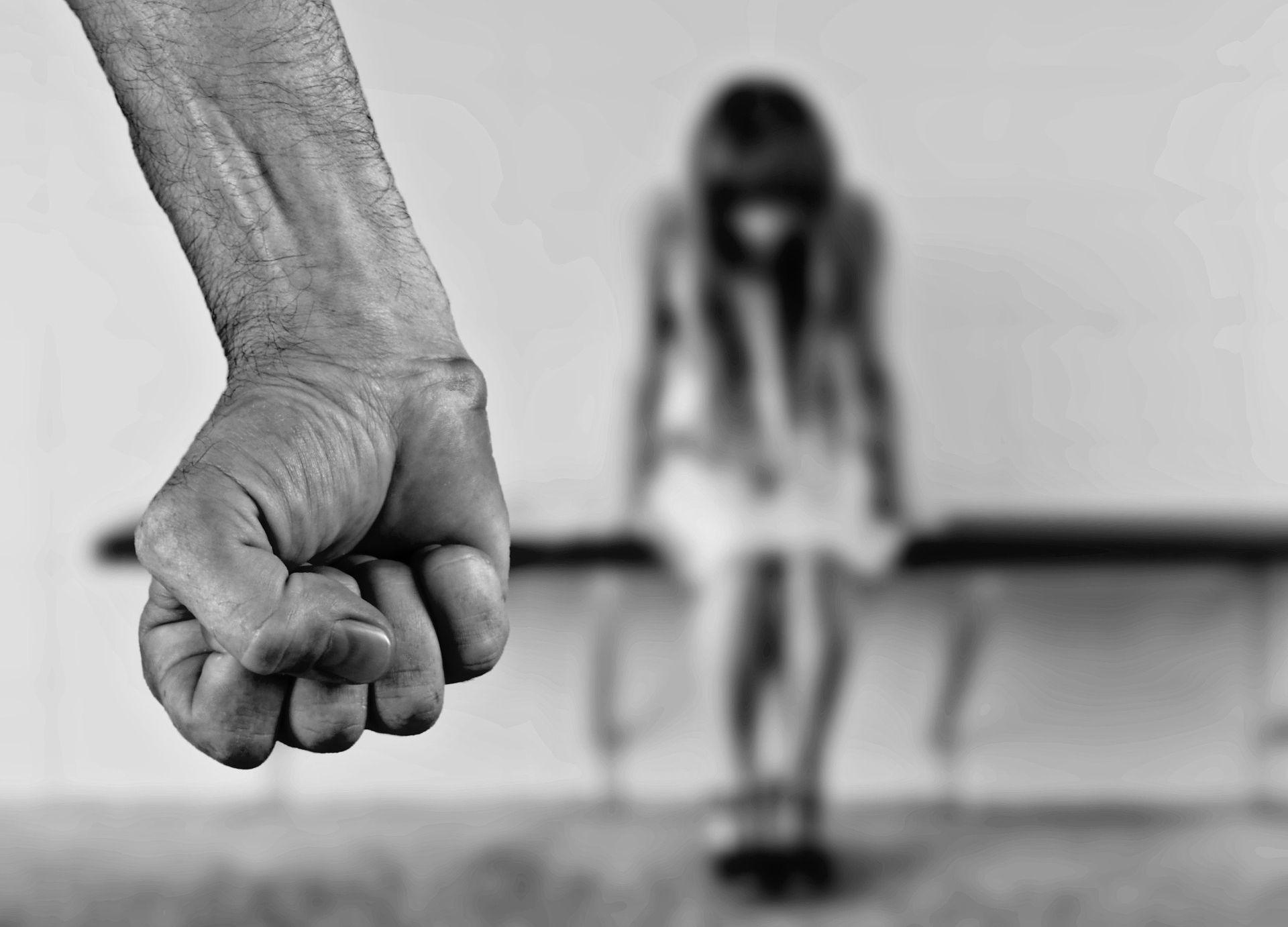 """HNS """"Nužno je provjeriti svaku sumnju u obiteljsko nasilje i zaštititi svaku osobu koja je ugrožena"""""""