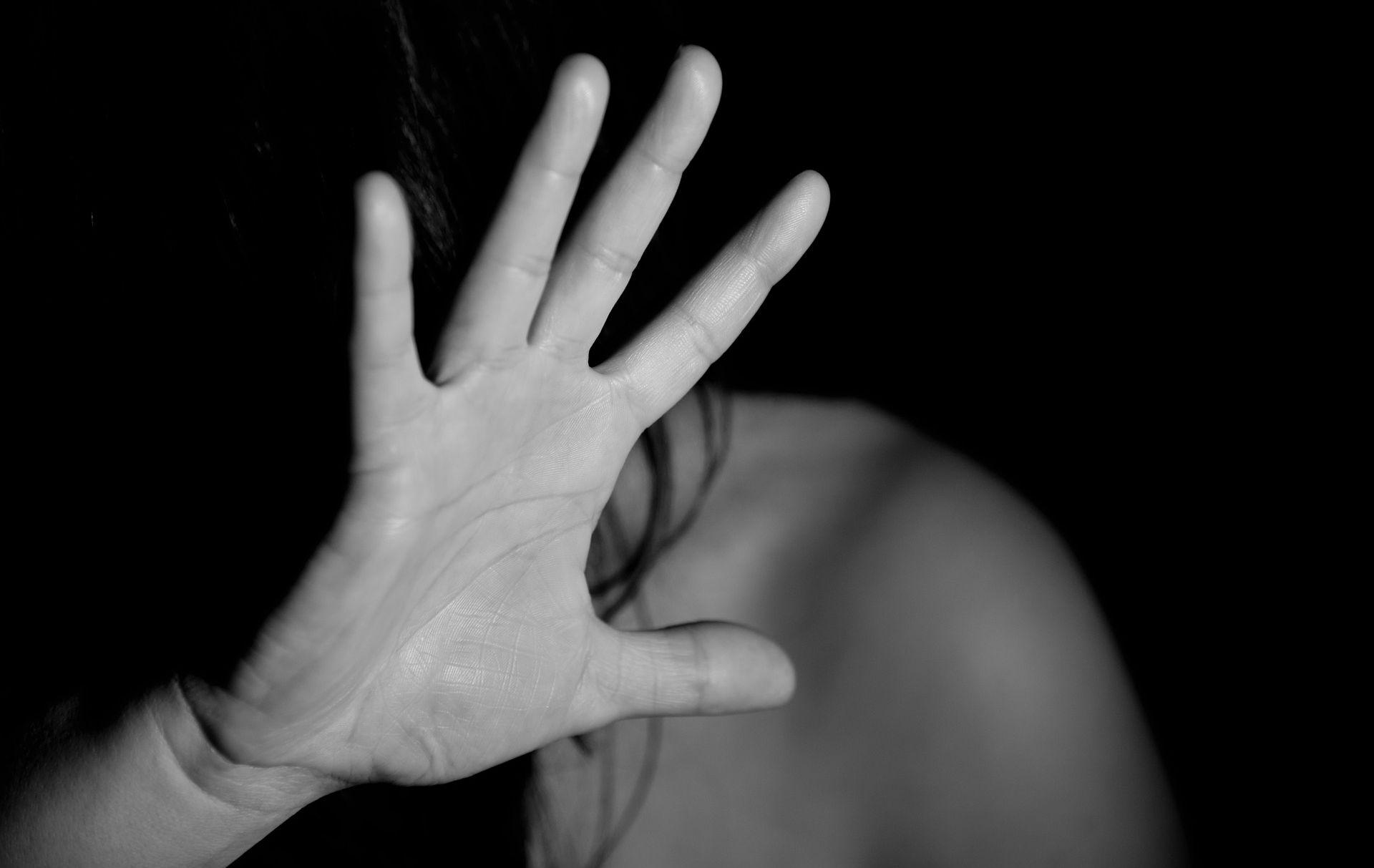 """DIREKTOR VIGILAREA """"Više nasilja nad ženama ima jer su fizički slabije"""""""