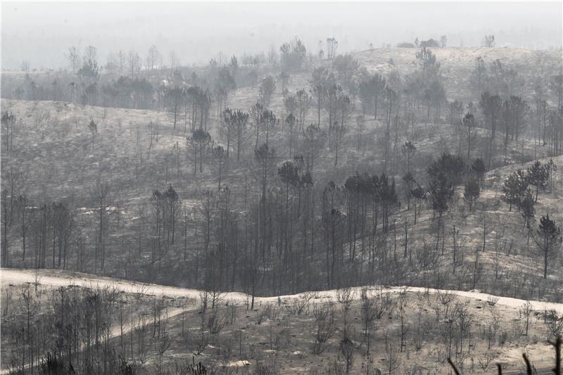 Nakon katastrofalnih požara portugalska ministrica unutarnjih poslova dala ostavku