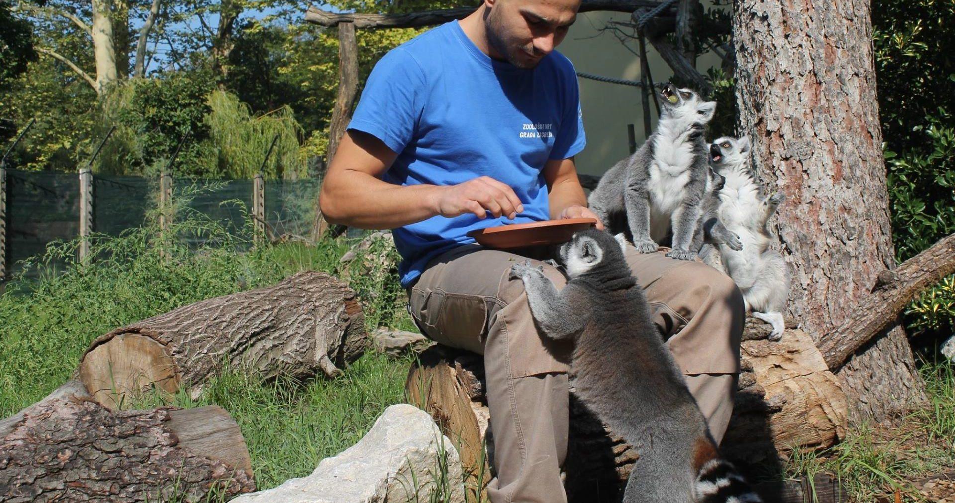 Na Svjetski dan životinja obilježava se i Međunarodni dan timaritelja (04.10.)