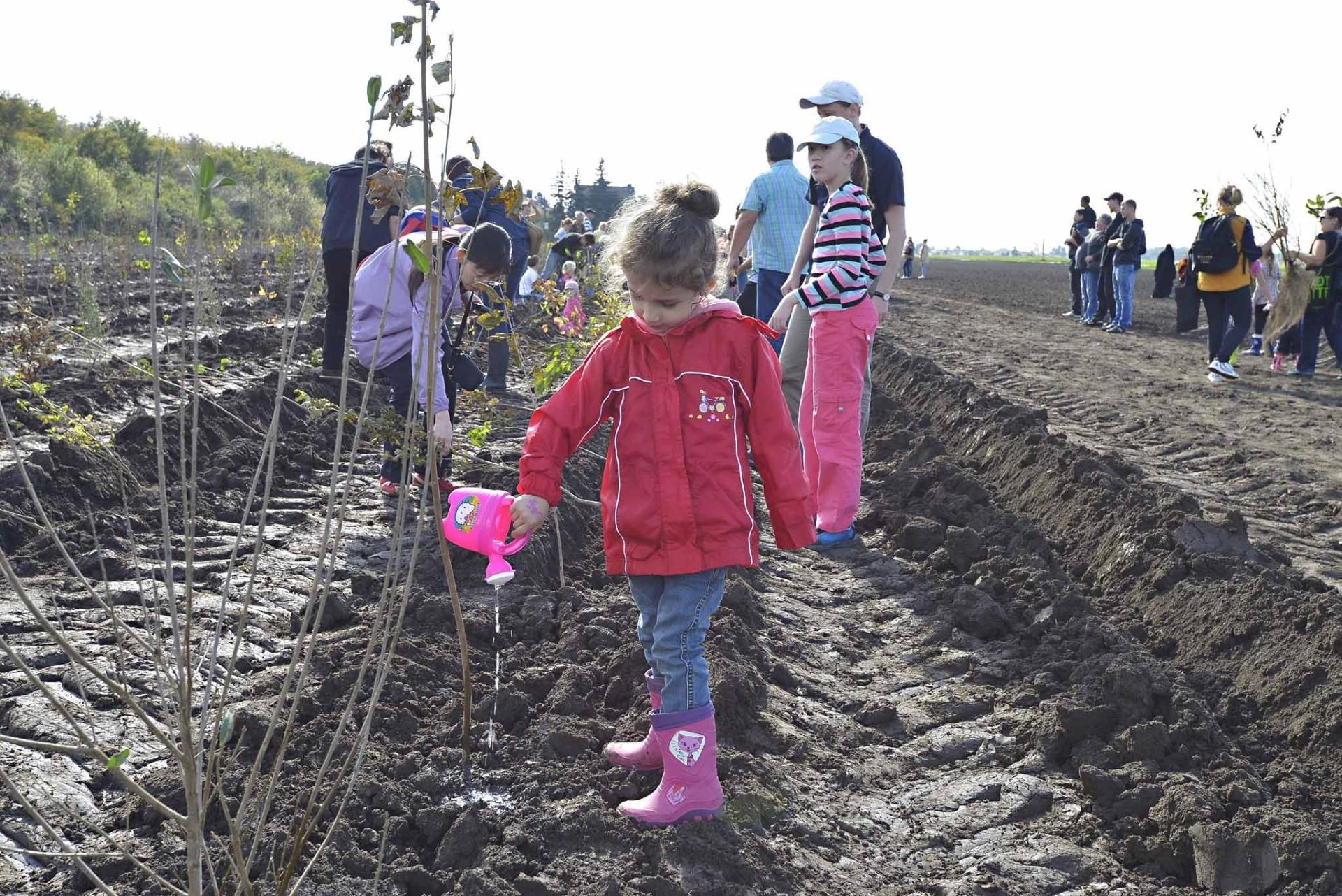 Djeca u Beču svake godine posade više od 10 000 stabala