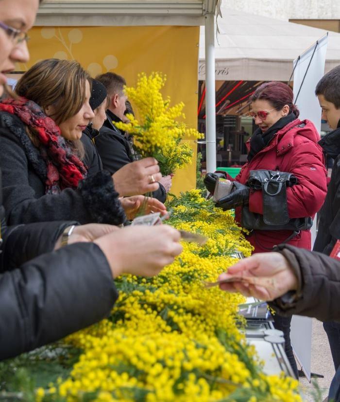 VIDEO: Pridružite se javnozdravstvenoj akciji na tradicionalnom Danu mimoza