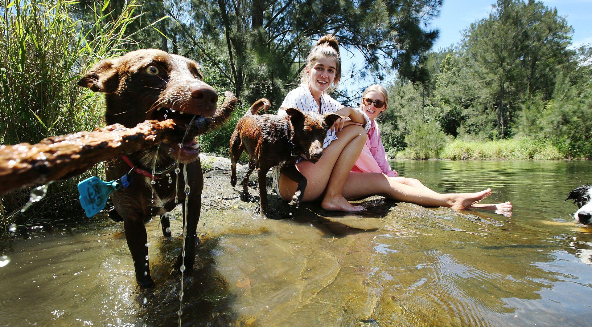 Ekstremne vrućine u Australiji, nekoliko ljudi umrlo
