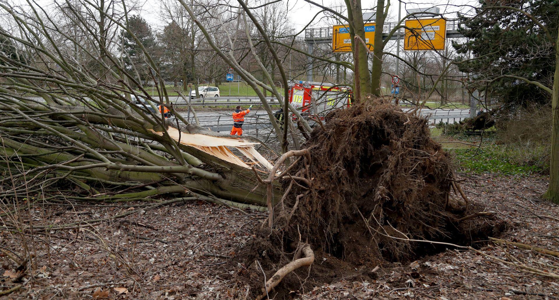 TROJE MRTVIH Orkan pogodio Nizozemsku i Njemačku