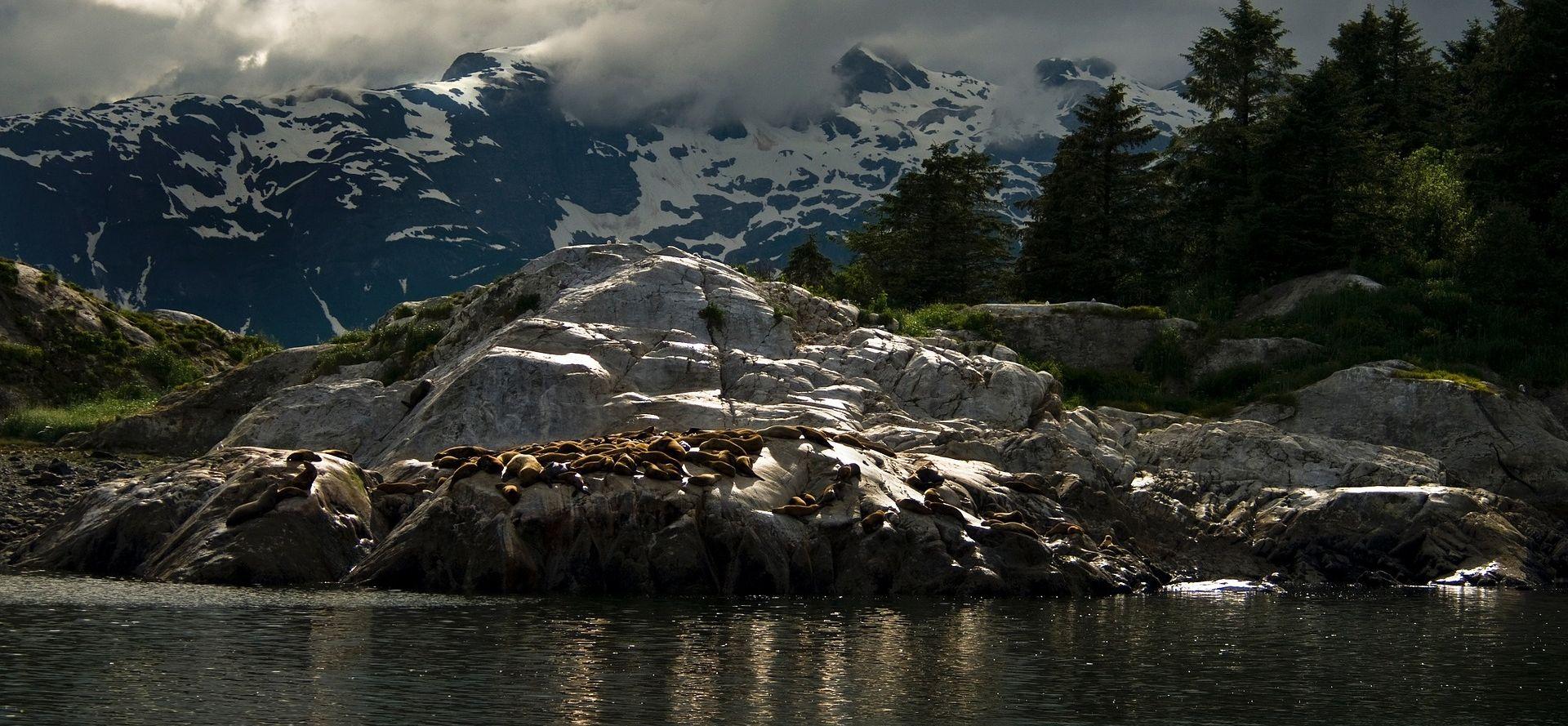 Snažan potres pogodio Aljasku, izdano upozorenje zbog tsunamija