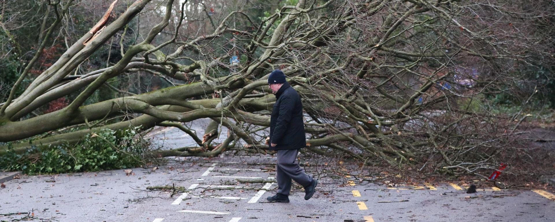 VJETAR 160 KM/H U oluji Eleanor troje mrtvih