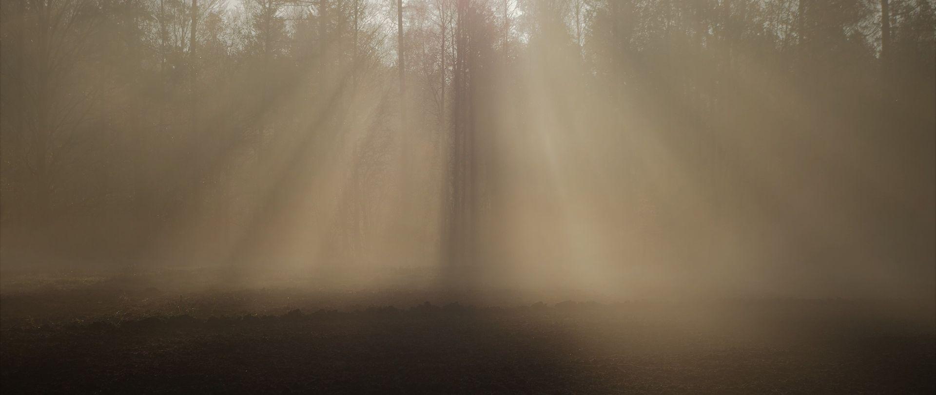 Magla u unutrašnjosti, poslijepodne sunčano