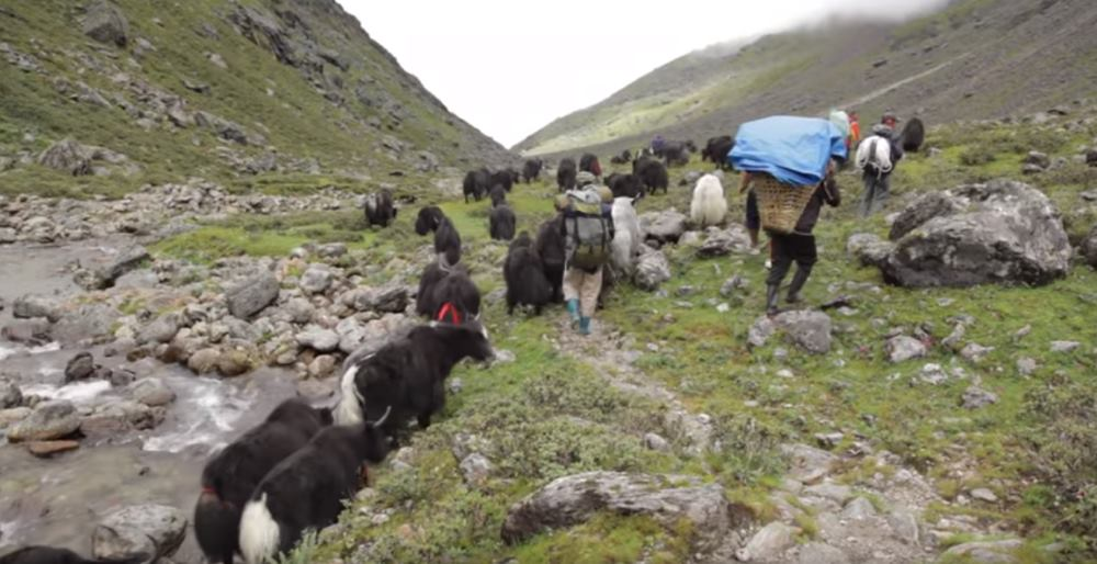 VIDEO: Put svile otvoren i tokom zimskih mjeseci