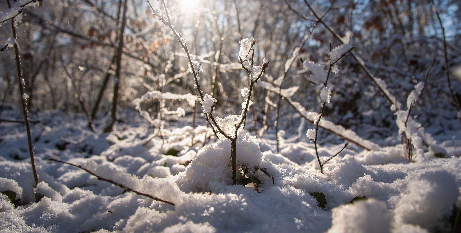Stižu minusi, snijeg, poledica, magla, olujna bura
