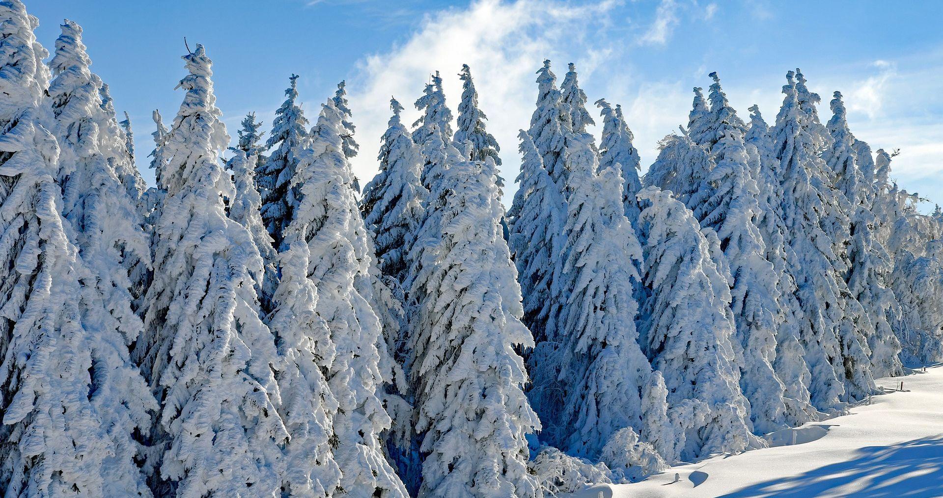 Susnježica i snijeg, na Jadranu vjetrovito