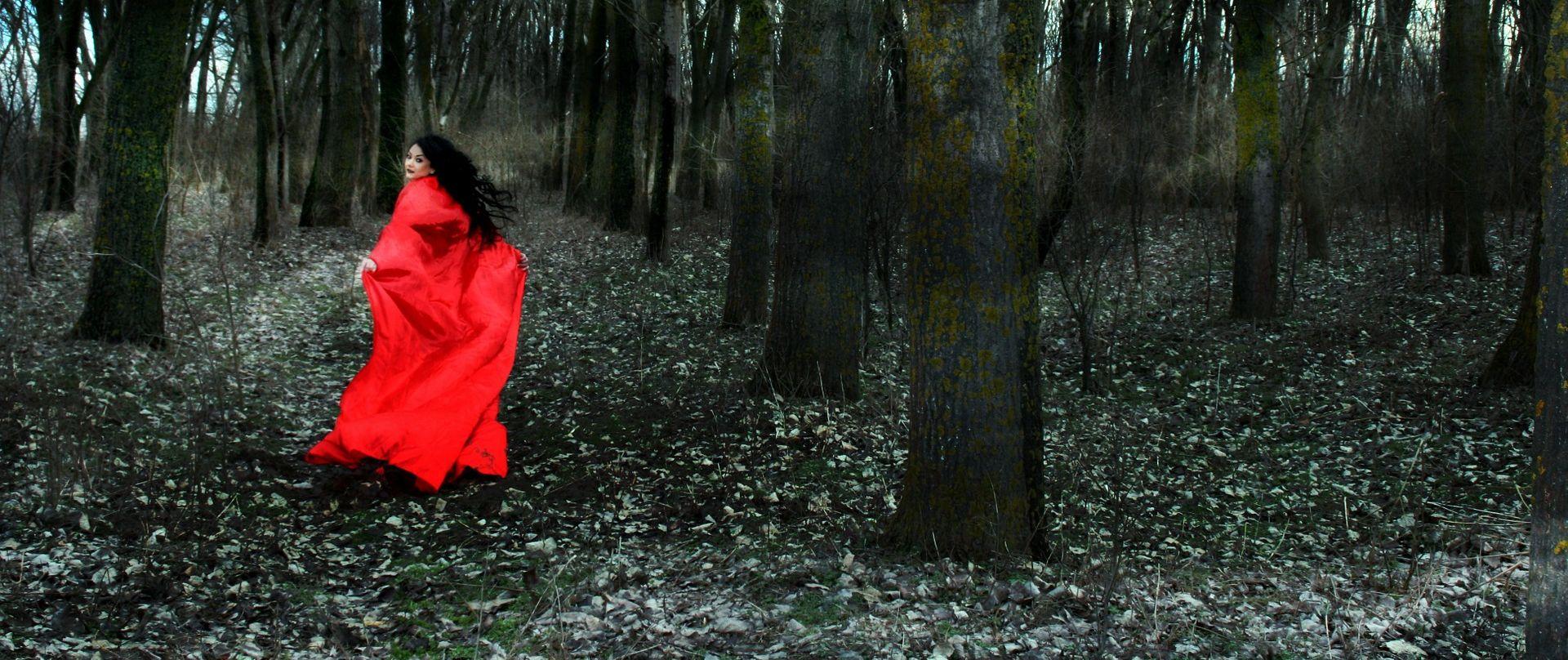 """U Vinkovcima premijerno izveden dječji mjuzikl """"Crvenkapica"""""""