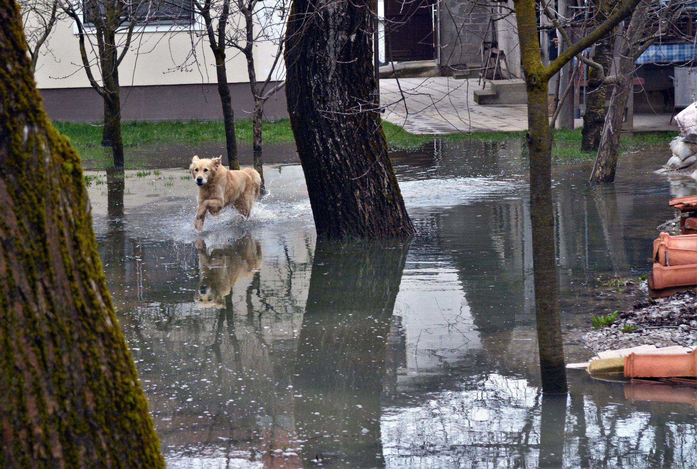KARLOVAC Poplava na komunalnoj infrastrukturi uzrokovala štetu od oko 5 milijuna kuna