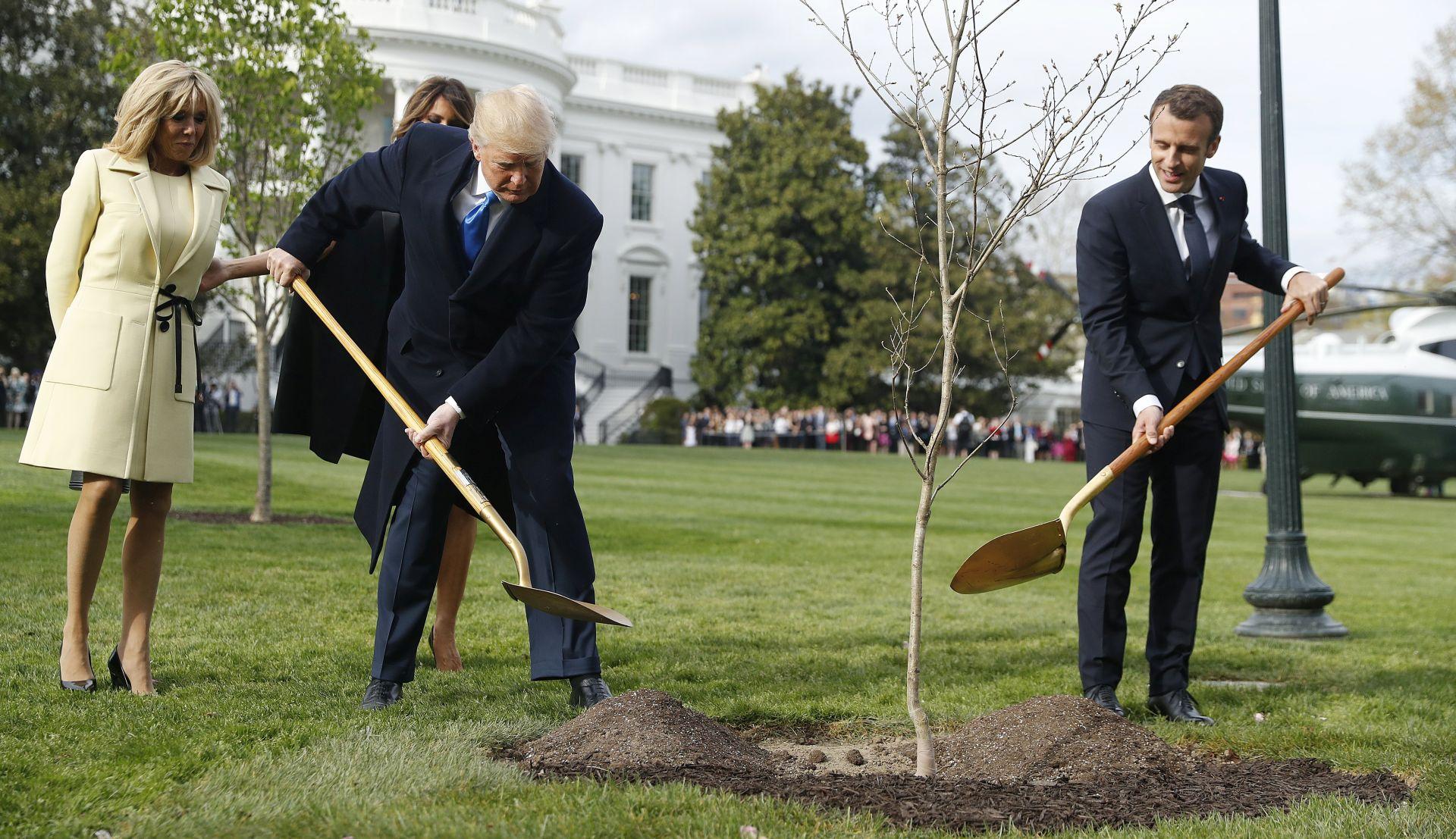 Macronovo stablo 'nestalo' s travnjaka Bijele kuće