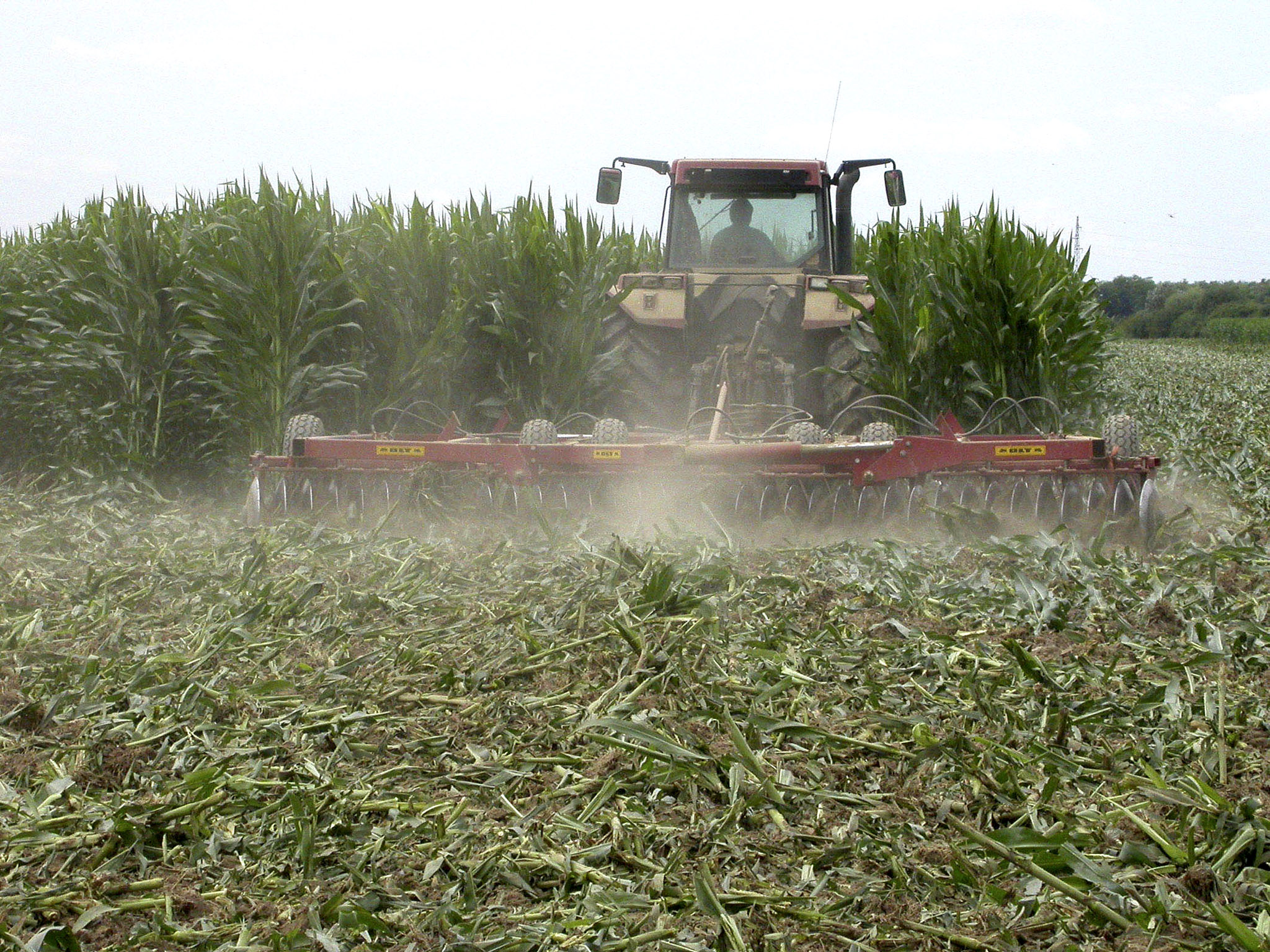 Sabor u petak o Buljevom prijedlogu da se zabrani GMO
